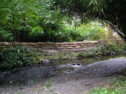 Photo of Miller Creek showing sandbags installed by property owner to protect against flooding