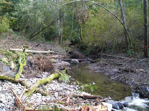 Photo showing restored section of Miller Creek at 2007 pipeline repair