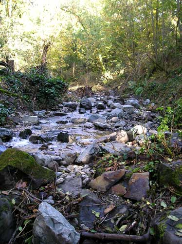 Photo showing sand, gravel, and rock at bottom of Miller Creek at 2007 pipeline repair