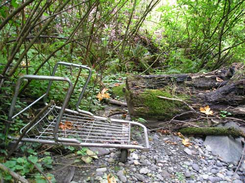 Photo of Miller Creek showing abandoned shopping cart