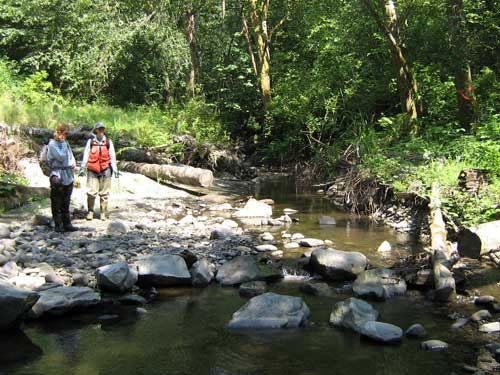 Photo of two people standing on rocky bank of forested stream