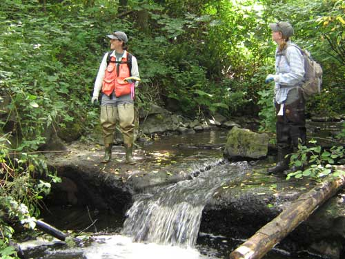 Photo of two women looking at surrounding vegetation while standing on small dam in stream