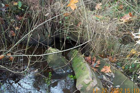 Photo of Walker Creek showing broken retaining wall and weeds obstructing the stream