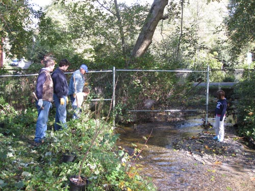 Photo of people standing on banks of small stream to view fish