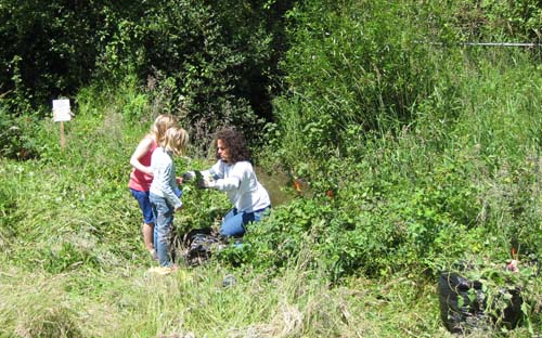 Photo of woman and two children weeding around plants next to stream