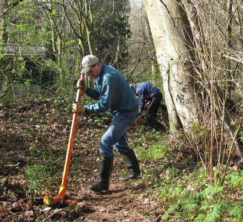 Photo of man using tool to remove a small bush in a forest