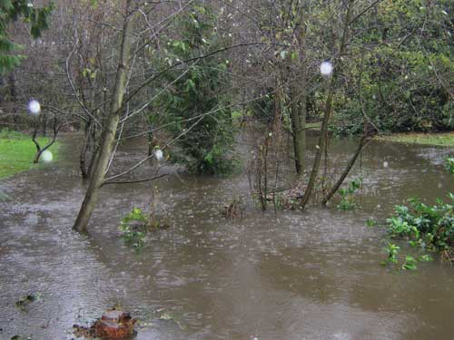 Photo showing flood waters engorging a stream in backyards