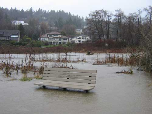 Photo of partly-submerged park bench surrounded by floodwaters