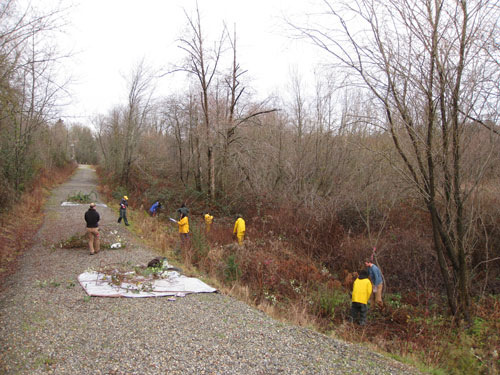 Photo of people working in a wooded area next to a gravel trail