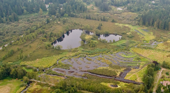 Hall Creek Natural Resources Management Area