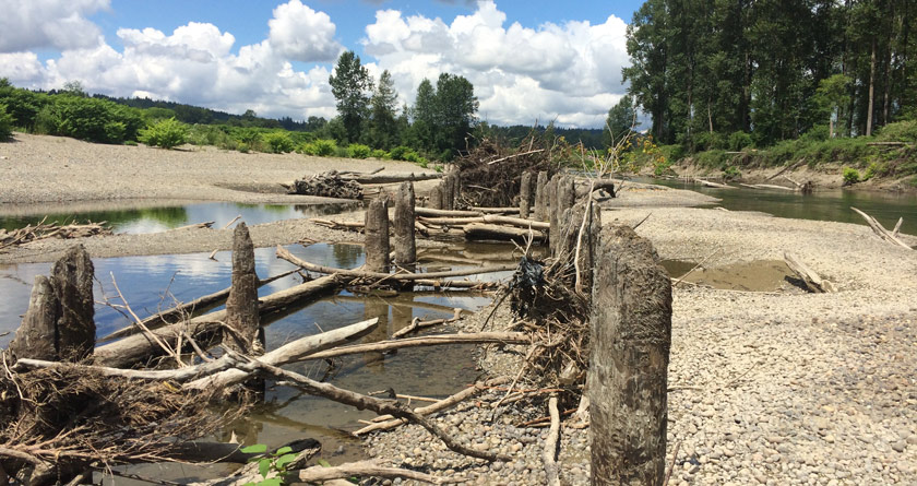 Snoqualmie Piling Removal Project