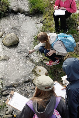Students taking water quality samples