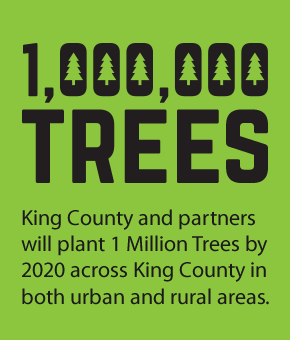 King County and partners will plant 1 Million Trees by 2020 across King County in both urban and rural areas.