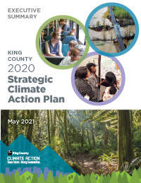2020 SCAP Executive Summary cover