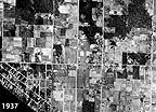 1937 Bellevue Aerial Photo