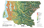 Chinook Status & 1995 Landsat Map