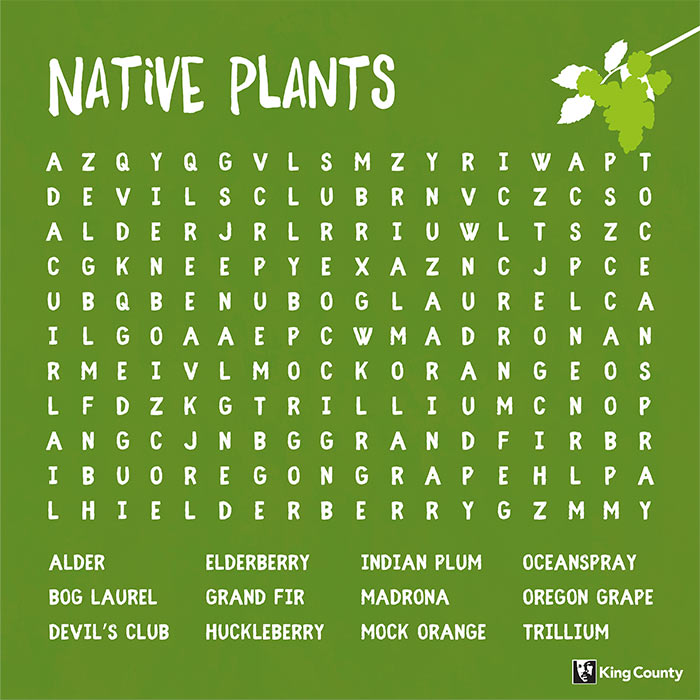 Native Plants word search