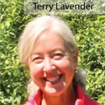 Terry Lavender