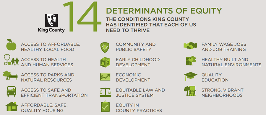 14 determinants of equity infographic