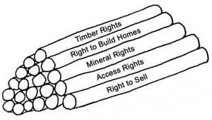 Illustration of a bundle of Development Rights