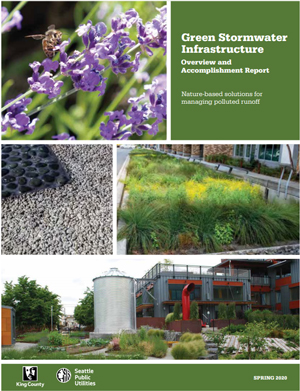 Green Stormwater Infrastructure Overview and Accomplishment Report, Spring 2020