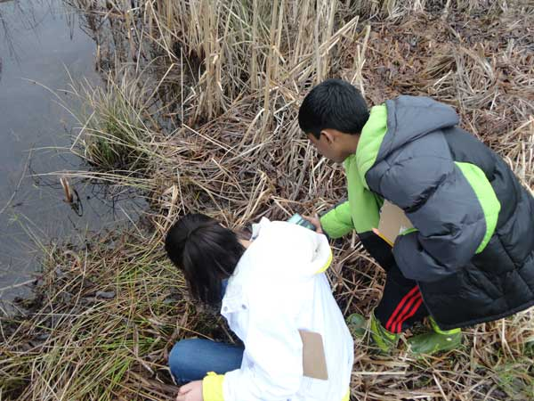 water quality exploration