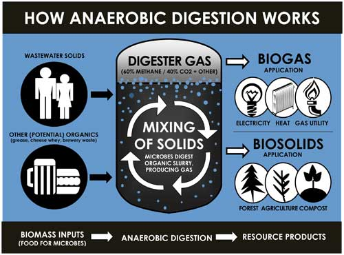 diagram of anaerobic disgestion