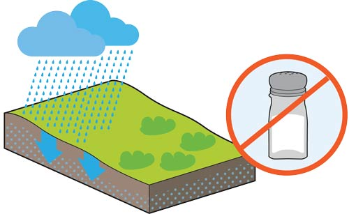 salt does not build up in soils irrigated with recycled water