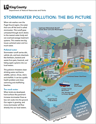 Stormwater pollution - the big picture