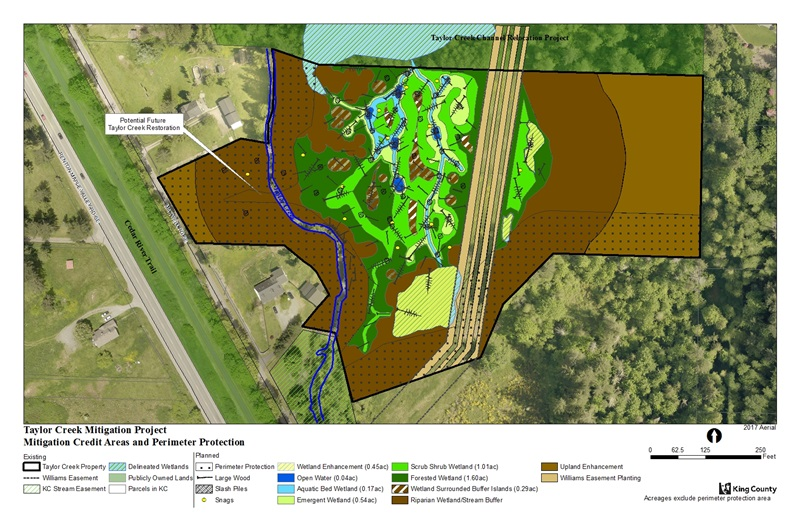 Diagram of proposed project for Taylor Creek Mitigation Site