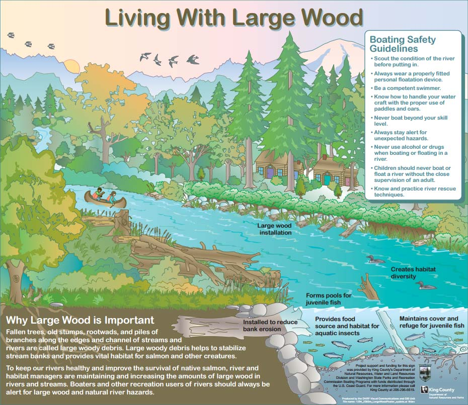 Signage: Living with large wood in King County rivers