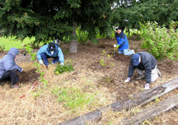 Volunteers at Duwamish Alive, 2008