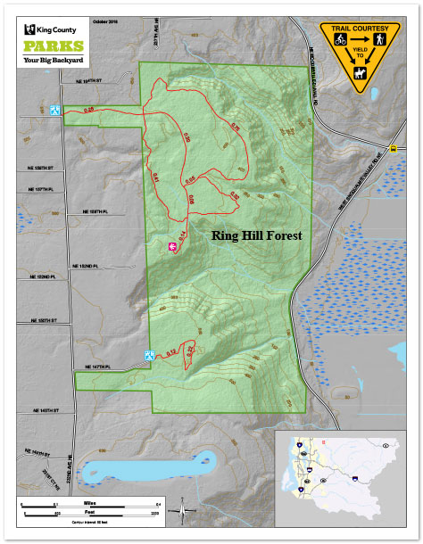 Ring Hill Forest preview image