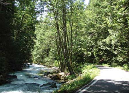 Old Cascade Scenic Highway