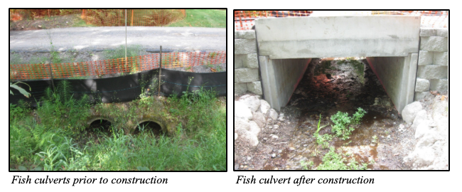ELST_Fish_Culverts