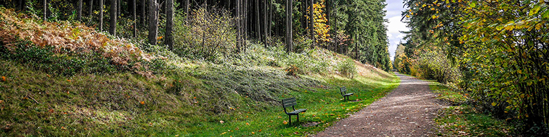 benches along the Green to Cedar Rivers Trail